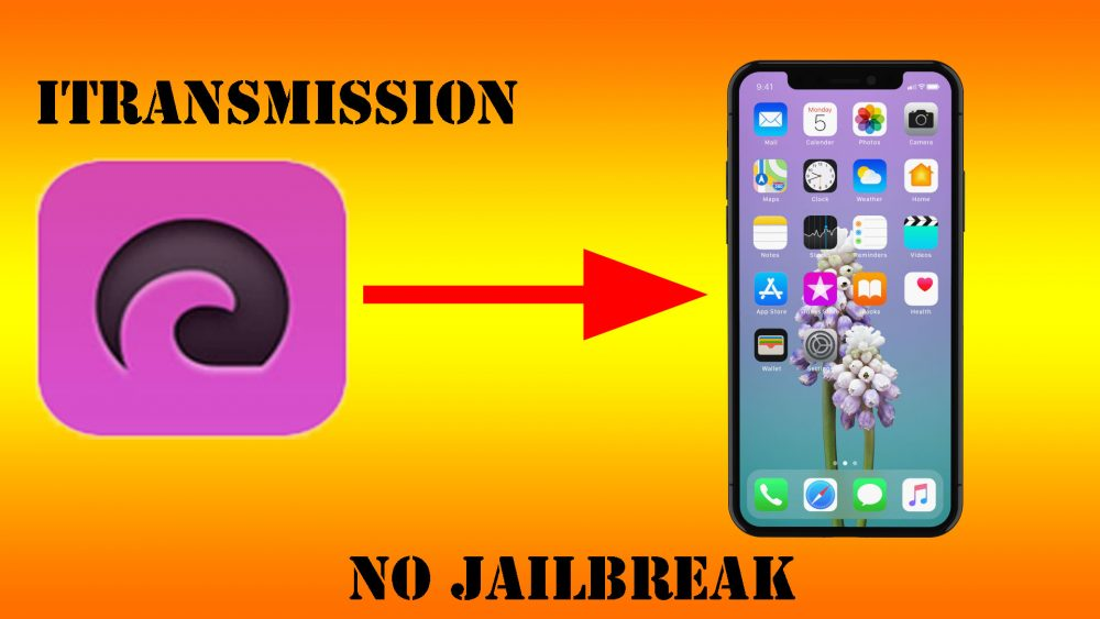 How to download iTransmission on your (iPhone/iPad) without jailbreak